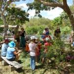 MT Molloy School Garden