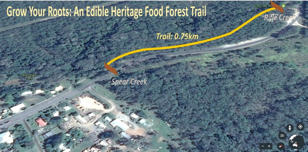 trail-overview