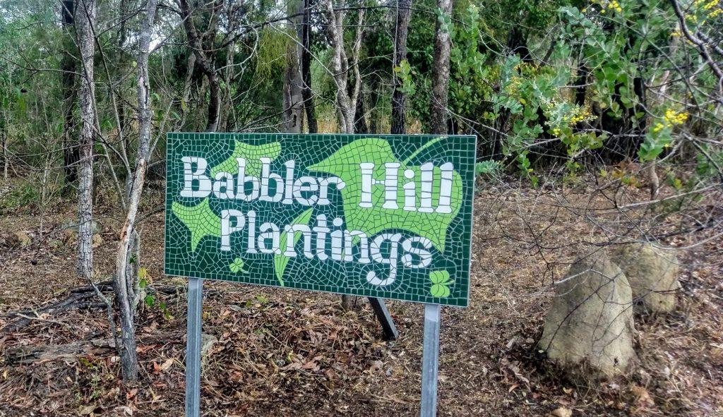 Babbler Hill Plantings